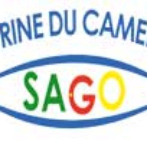Forum des collectivités locales du Cameroun