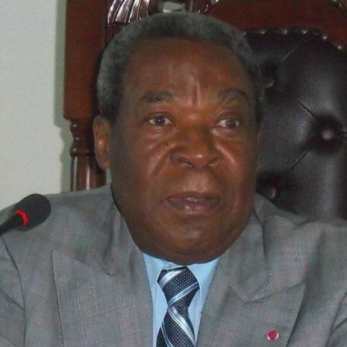 Marcel Niat Njifenji : Représente les CTD sans trop d'offensive