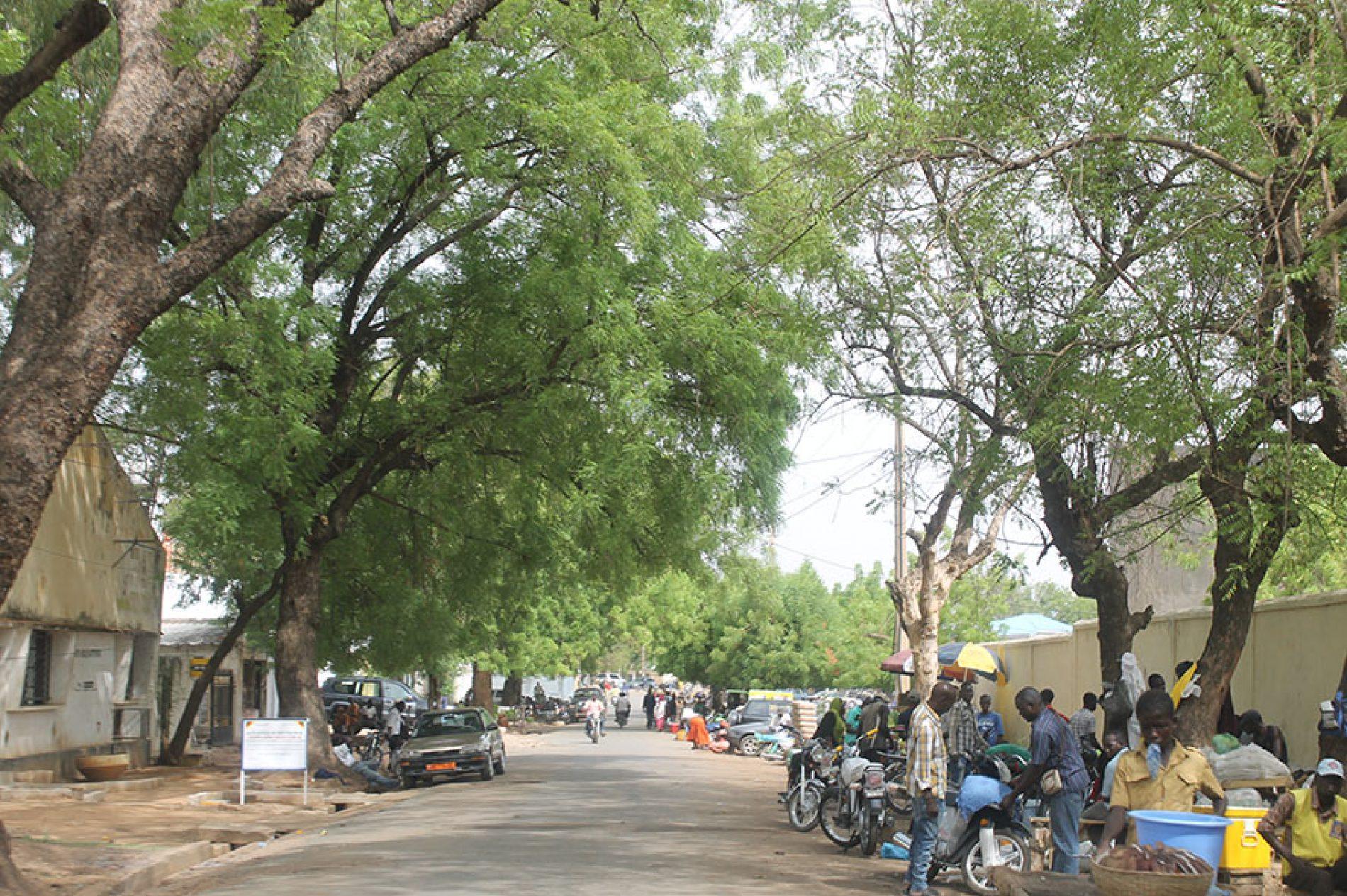 Adressage : Des figures historiques dans les rues de Garoua