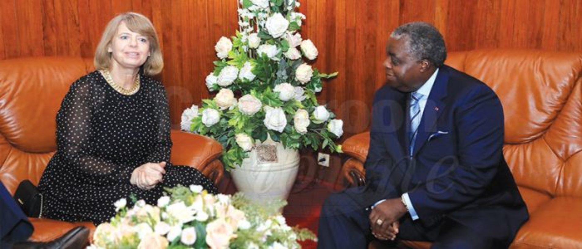 Décentralisation : le Cameroun à l'école britannique