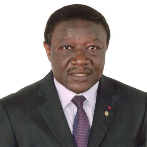 Barthelemy Kom Tchuente : « les élections sénatoriales ne présentent aucun enjeu pour le Rdpc qui est garanti de gagner la totalité des 70 sièges »
