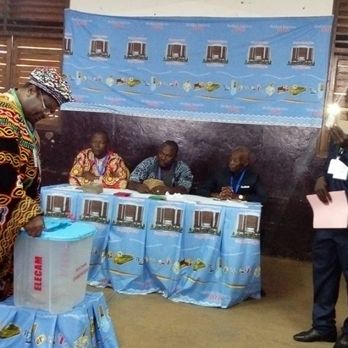 2018 Senatorial Elections in Cameroon: ELECAM Receives a pass mark from observers