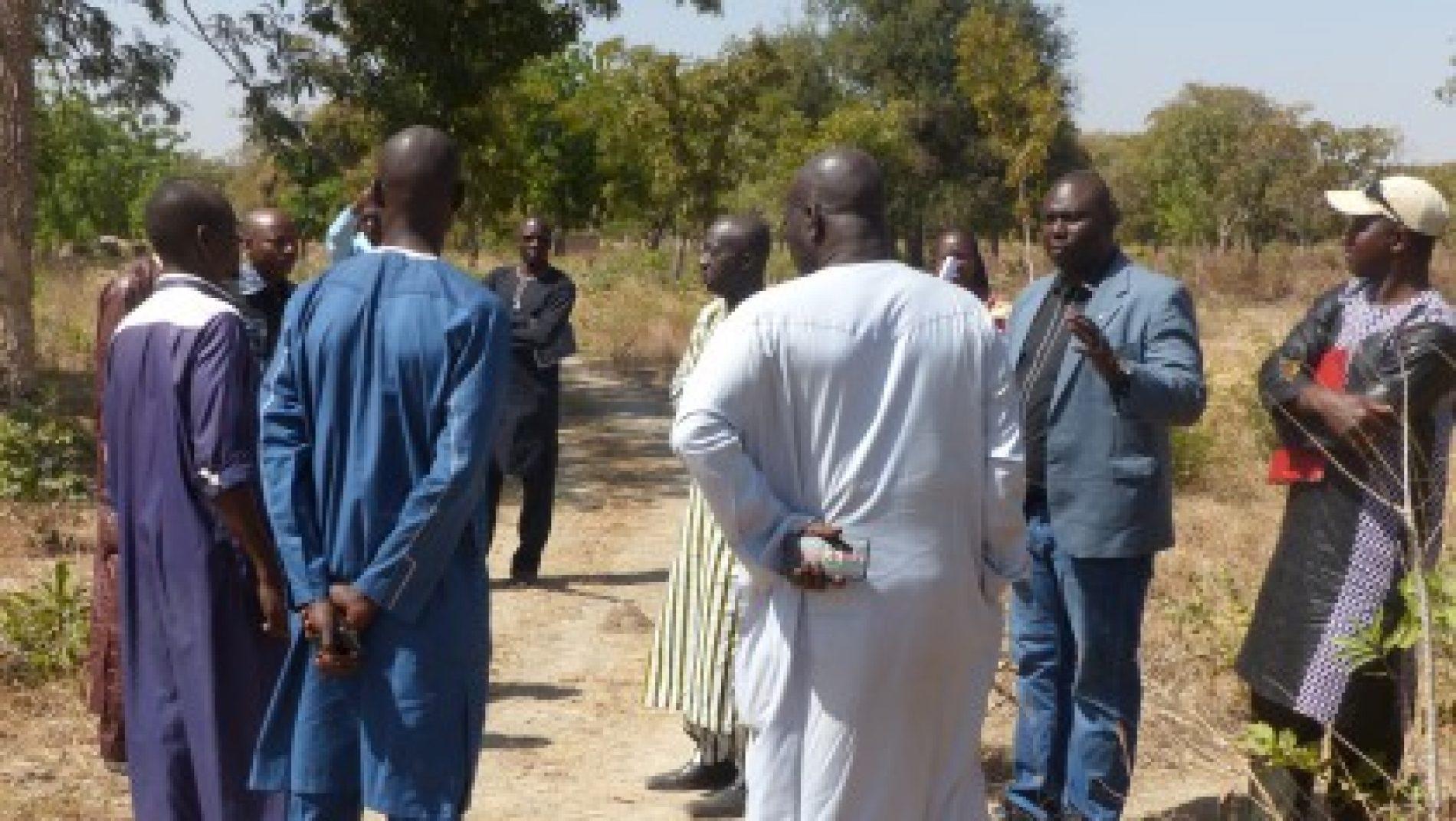 Sénégal – développement local : Un projet contre l'exode rural à Bancoumana lancé