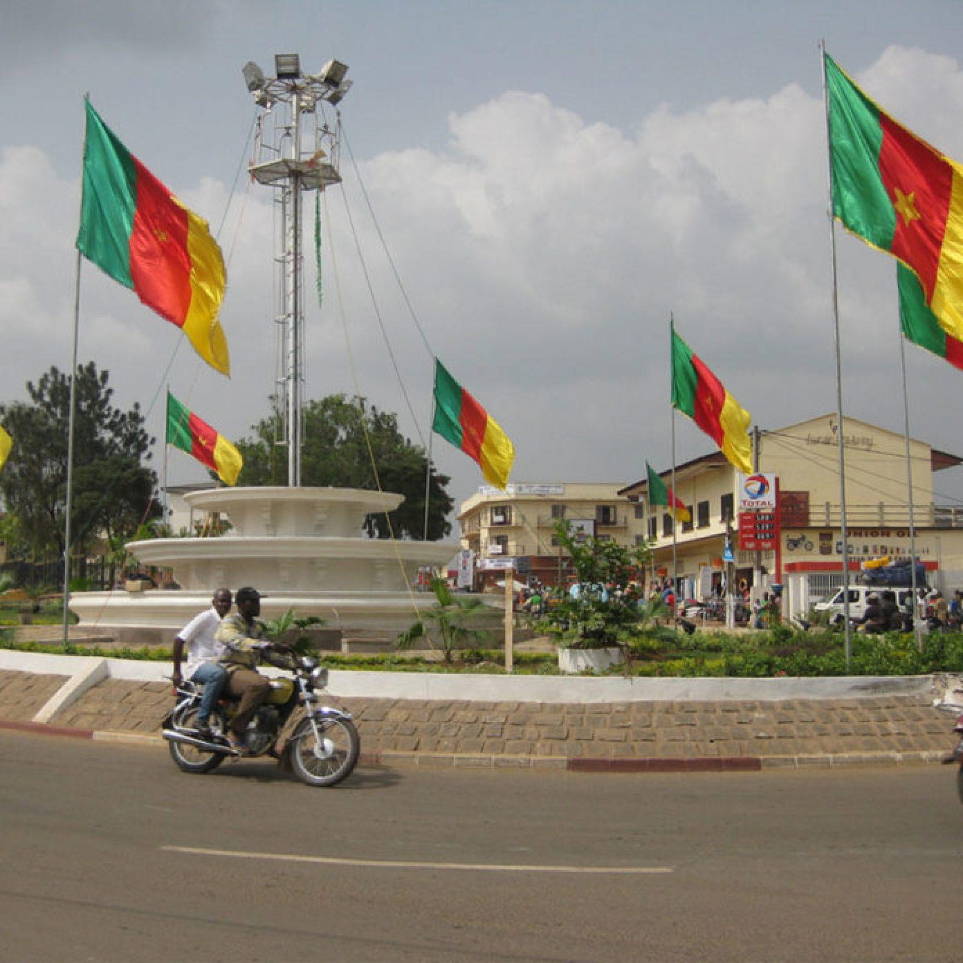 Région du Sud : Bientôt des forêts communales à Ebolowa 1 et Efoulan