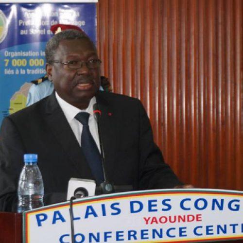 Developpement local : Le Comité de pilotage du PRODEL engage des réflexions