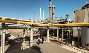 Congo – Environnement: Des déchets pétroliers devenus des engrais bio!