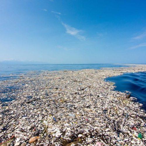 Océan Pacifique – déchets plastiques: Une association se lance un pari fou!