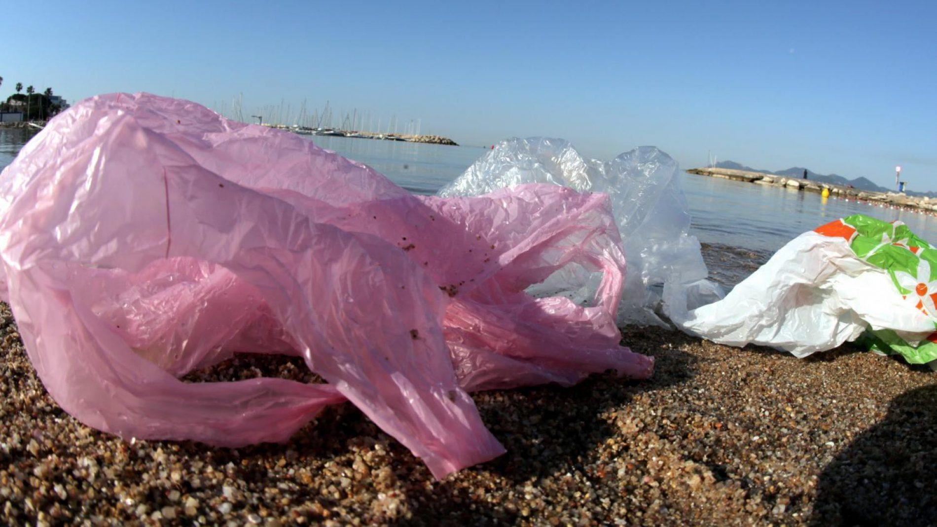 Protection de l'Environnement : La Nouvelle-Calédonie interdit l'utilisation des sacs plastique à usage unique