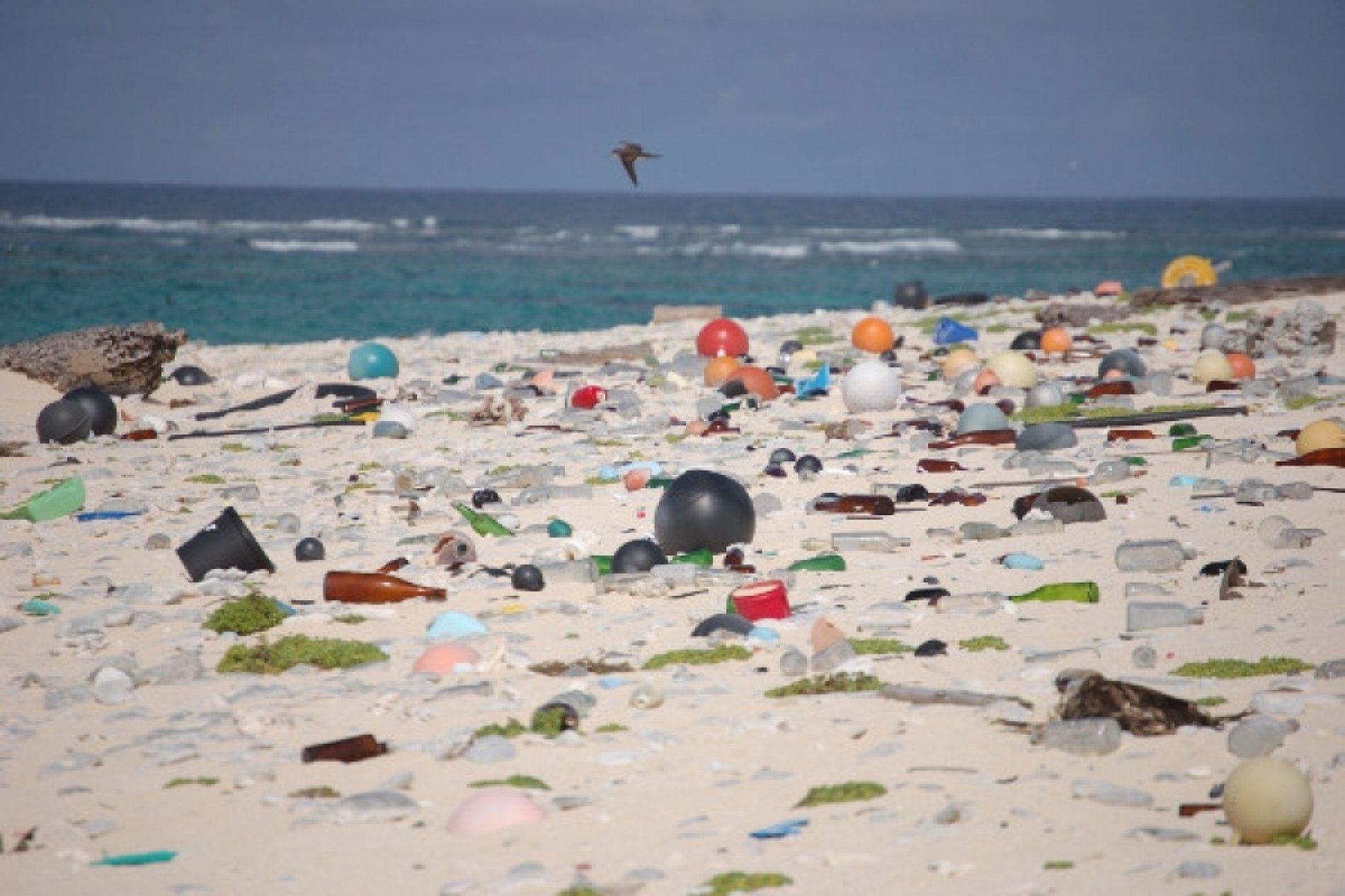 Seychelles – Environnement : Interdiction du plastique à usage unique
