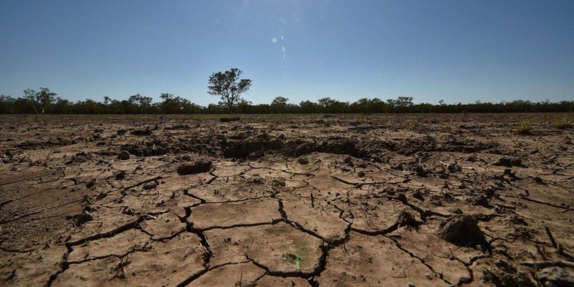 Changement climatique : Les sols en danger selon un rapport alarmant du GIEC !