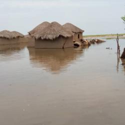 Région de l'Extrême-Nord : Trois communes touchées par les inondations