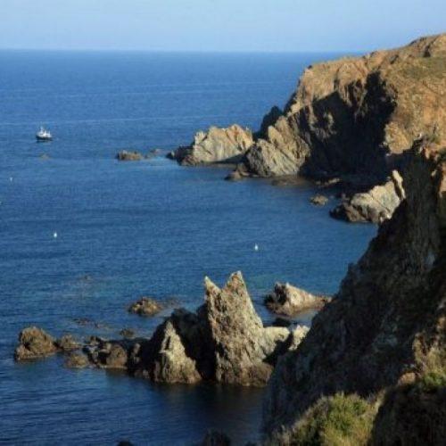Environnement : Le changement climatique aggrave la situation des maladies animales en Méditerranée