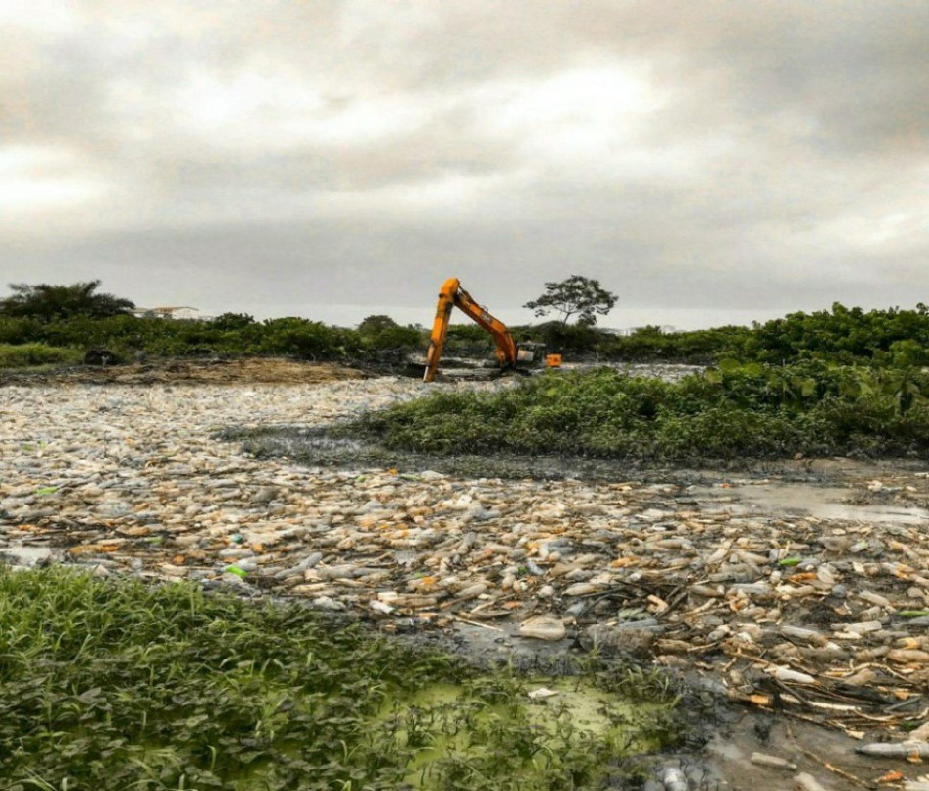 JMH 2019 – Gestion des déchets plastiques : 600 000 tonnes de menaces