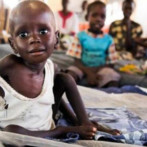 ODD 2: Les chiffres alarmants sur l'objectif Faim Zéro de l'ONU